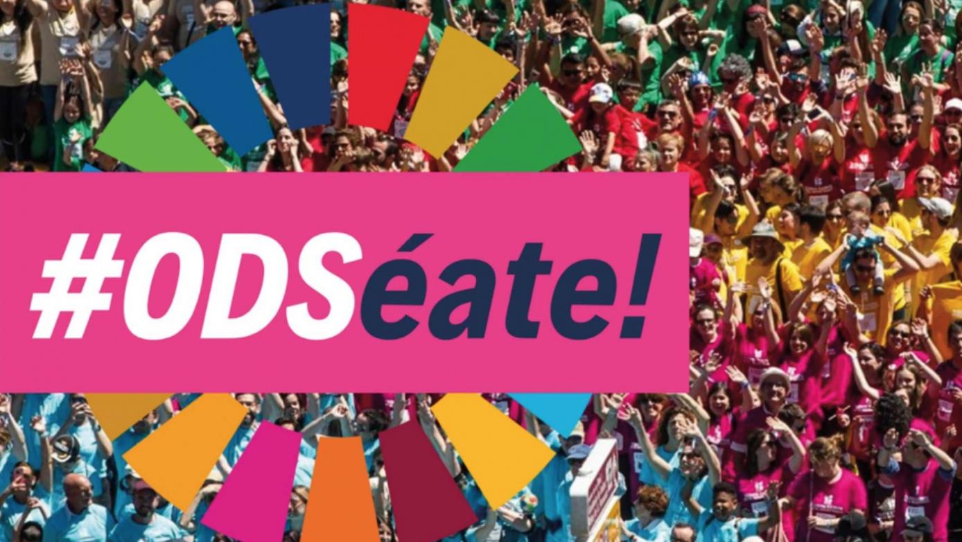 Icono de los ODS